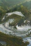 Het terras van Hani, Yunnan, China01 Stock Afbeelding