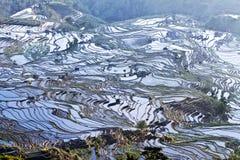 Het terras van Hani, Yunnan, China012 Stock Foto's