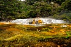 Het Terras van Warbrick, Vulkanische Vallei Waimangu Royalty-vrije Stock Foto