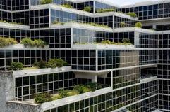 Het terrasvormige leven Stock Foto's