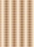 Het textiel Naadloze patroonontwerp voor vrouw draagt Stock Foto's