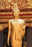 Het Thaise gouden standbeeld van Boedha royalty-vrije stock afbeeldingen