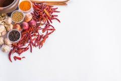 Het Thaise kader van de kruidentekst Stock Foto