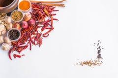 Het Thaise kader van de kruidentekst Royalty-vrije Stock Afbeelding