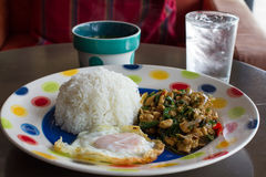 Het Thaise kruidige voedsel, beweegt gebraden kippenwhit basilicum Stock Afbeelding