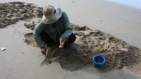 Het Thaise oude het gebruiksgietlepel van vrouwenmensen graven vindt shell en schaaldieren op het strand stock footage