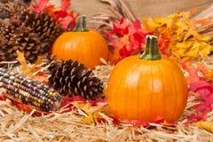 Het thema van de herfst Royalty-vrije Stock Afbeelding