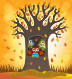 Het themabeeld 4 van de uilboom Stock Foto