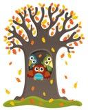 Het themabeeld 3 van de uilboom Stock Afbeeldingen
