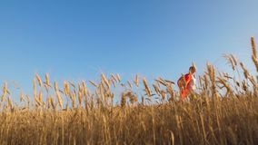 Het tienermeisje speelt een superhero in rode mantel kindlooppas over tarwegebied in mooie kaap tegen een blauwe hemel stock footage