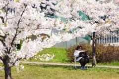 Het tijdschrift van de vrouwenlezing in bloeiende tuin Stock Fotografie