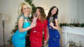 Het toejuichingenmeisje zegt toost, drankalcohol van van wijnglazen, schitterende jonge vrouwen die pret het vieren, Vrolijke Nie stock video