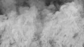 Het toenemen Rook stock videobeelden