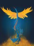 Het toenemende Digitale Schilderen van Phoenix Royalty-vrije Stock Foto's