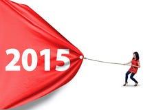 Het toevallige wijfje trekt nummer 2015 stock afbeelding