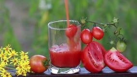 Het tomatesap wordt gegoten in een glas op de aard in de tuin, naast heel wat rijpe tomaten stock videobeelden