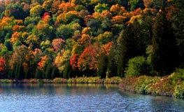 Het toneel landschap van de Herfst in Allegheny royalty-vrije stock foto's