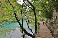 In het toneel nationale park van Plitvice-Meren in Kroatië royalty-vrije stock afbeelding