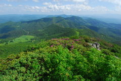Het ToneelLandschap van de Bergen van Noord-Carolina Royalty-vrije Stock Afbeelding