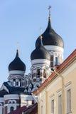 24-27 08 2016 het Toneelpanorama van de de zomer mooie luchthorizon van de Oude Stad in Tallinn, Estland Royalty-vrije Stock Fotografie