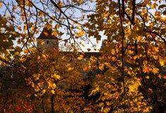 Het tonen van de blauwe hemel die door gouden en rode r-bladeren glanzen Royalty-vrije Stock Foto's