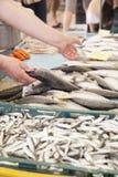 Het tonen van versheid van de vissen op markt stock afbeelding