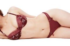 Het torso van de vrouw Royalty-vrije Stock Foto's