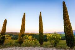Het Toscaanse Landschap, Vitaleta-kapelkerk, cipresbomen Stock Foto's