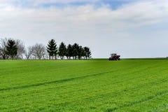 Het tractorwerk aangaande het gebied Het toepassen van meststof in de lente stock afbeelding