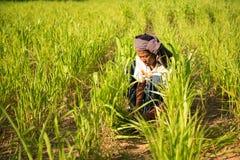Het traditionele Aziatische mannelijke landbouwer werken Royalty-vrije Stock Fotografie