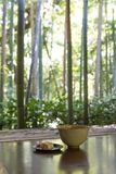 Het traditionele Japanse theeceremonie dienen met landschap Royalty-vrije Stock Foto