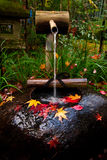 Het traditionele Japanse tuin modelleren Royalty-vrije Stock Afbeelding