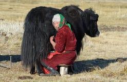 Het traditionele Mongoolse Leven 3 Stock Foto