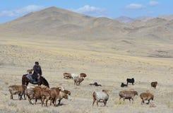 Het traditionele Mongoolse Leven 4 Stock Fotografie