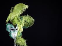 Het traditionele Venetiaanse Masker van Carnaval. Stock Fotografie
