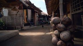 Het traditionele wevende dorp van Sasaksade in Lombok stock footage