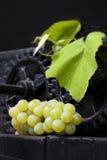 Het traditionele wijn maken Stock Afbeelding