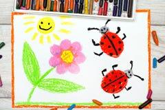 Het trekken: bloem, zon en lieveheersbeestjes op Witboekachtergrond Royalty-vrije Stock Foto's