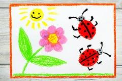 Het trekken: bloem, zon en lieveheersbeestjes op Witboekachtergrond Royalty-vrije Stock Afbeelding