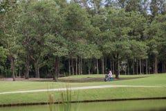 Het trekken van caddies over de golfcursus royalty-vrije stock foto's
