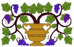 Het trekken van druiven en bladeren in een vaas Stock Foto's