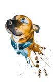 Het trekken van het hoofd van een hond Stock Foto
