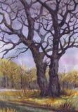 Het trekken van Twee Bomen laat Daling Document, waterverf Stock Foto