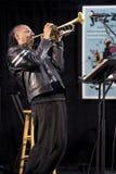 Het Trio van Brownmanelectryc speelt de Al Canadese Jazz Festival in Havenhoop, - 13 September, 2015 Stock Foto's
