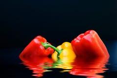 Het Trio van de groene paprika Stock Afbeelding