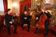 Het trio van het koord royalty-vrije stock afbeeldingen