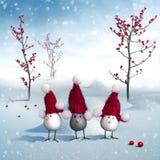 Het trio van vogels Royalty-vrije Stock Afbeelding