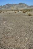 Het troosteloze landschap van de Vallei van de Dood Stock Foto