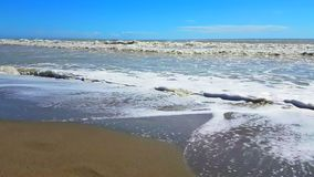Het tropische Caraïbische strandoverzees met gouden zand, vakantie, ontspant en stock video