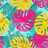 Het tropische exotische naadloze patroon van monsterapalmbladen Exotische wildernis backgound stock illustratie